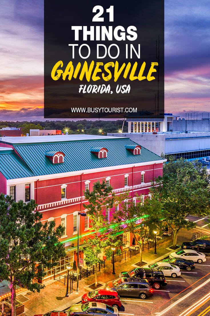 21 Fun Things To Do In Gainesville Florida Gainesville Florida Road Trip Fun Fun Things To Do