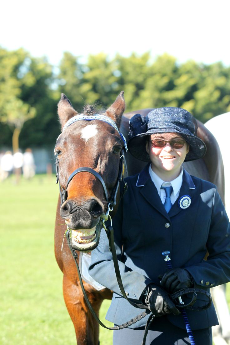 bay standardbred horse named Freddie at his first show