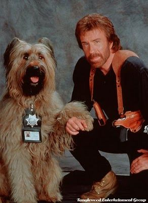 Chuck Norris loves animals too.