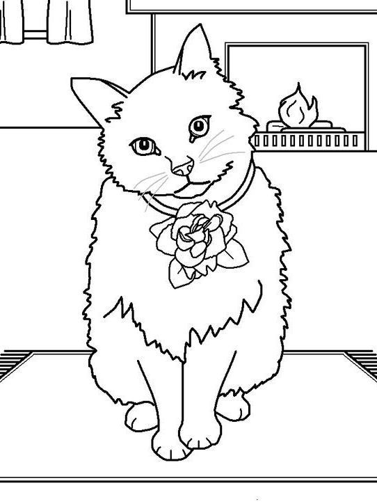 21 best Things to Colour images on Pinterest Coloring books - fresh coloring pages with multiple animals