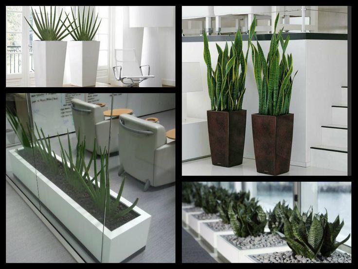 Las 25 mejores ideas sobre plantas de oficina en for Planta arquitectonica de una oficina