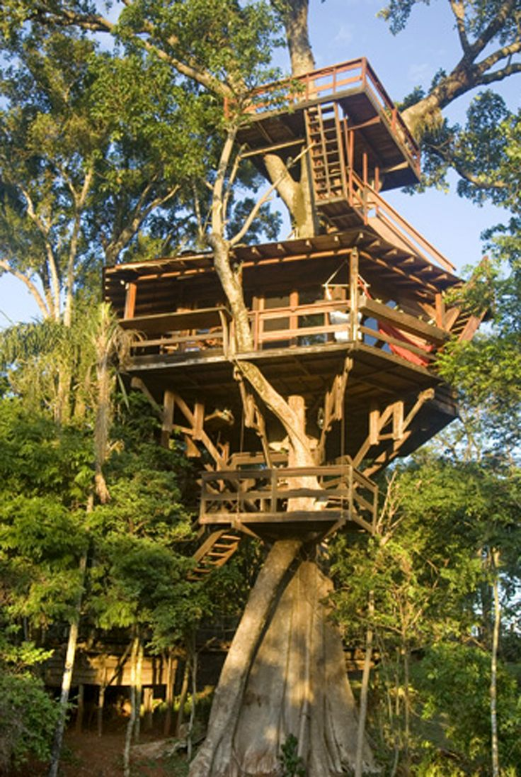 Casa de 80 m2 a 10 m de altura sobre figueira centenária.  O mirante de 18 m2 est;a a 23 m de altura do chão. Tree house of 80 m2 at 10 meters from the ground.  The eagle's nest at the canopy stands at 23 meters of height and has 18 m2 of space.  Built by Casa na Árvore Ltda - 2002