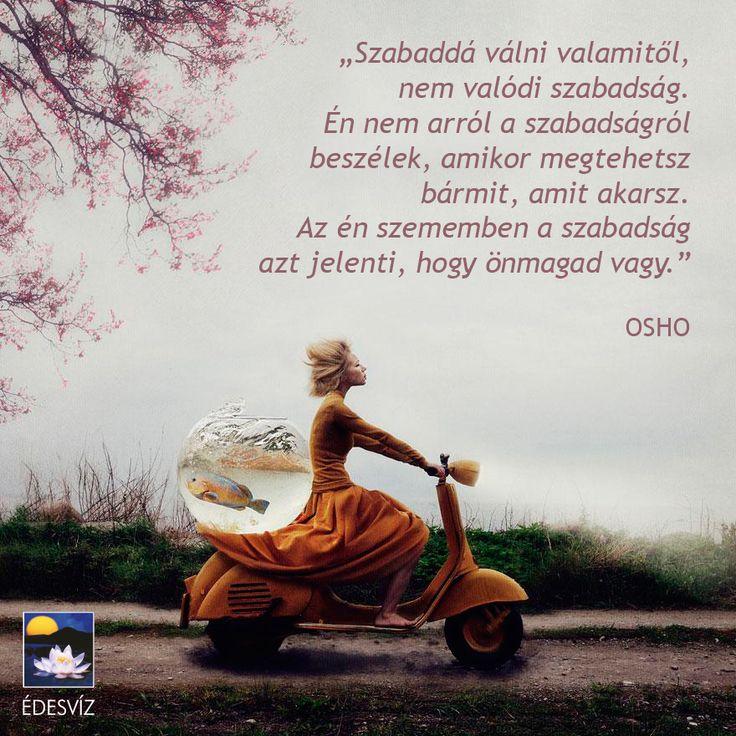 Osho idézet a szabadságról. A kép forrása: Édesvíz Kiadó