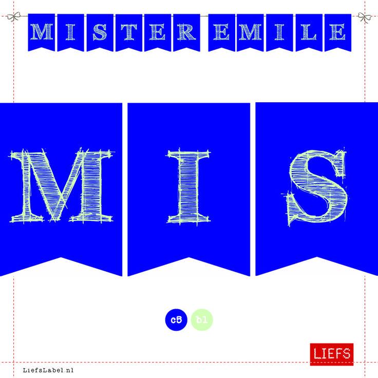 Mister Emile ♡ Styling ♡ Thema Ellen ♡ Maak ook je eigen slinger! ♡ www.LiefsLabel.nl