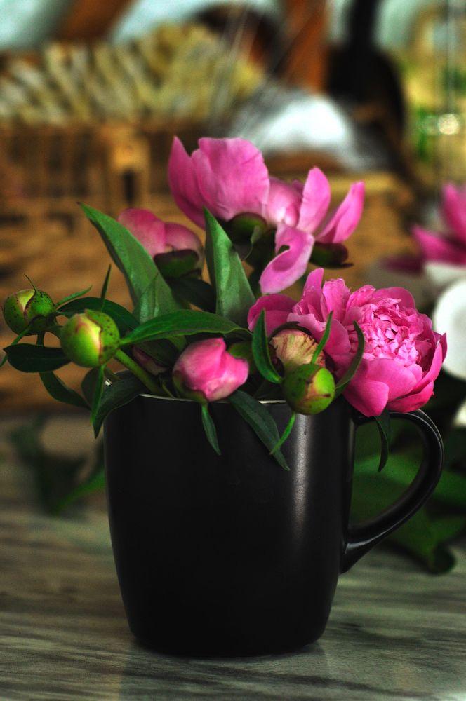 весна в чашке