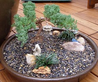 10 best Dish Gardening Ideas images on Pinterest | Singing ... Mini Japanese Garden Design on mini butterfly designs, mini christmas designs, mini hotel designs, mini gazebo designs, mini tree designs, mini pool designs, mini cherry blossom designs, mini bridge designs, japanese koi ponds designs,