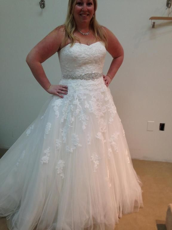 Plus size lace wedding dresses can be made affordable. This strapless wedding gown has a sweetheart bust line. There is a beaded waist belt for bling. This a-line wedding dress can be made with any changes. Get pricing and more details on plus size wedding dresses at www.dariuscordell.com ( We can also provide affordable custom designs & replicas of couture bridal dresses.)