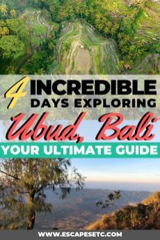 Planning a trip to Ubud? This spot is Bali's cultu…