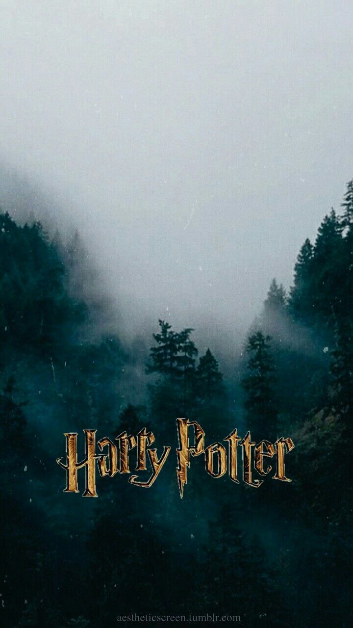 Pin By Wallpaper On Wallpaper Harry Potter Iphone Harry Potter Iphone Wallpaper Harry Potter Wallpaper