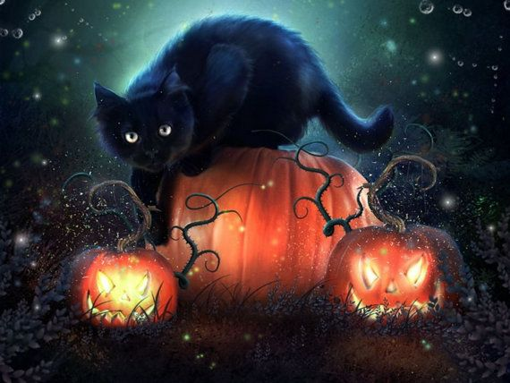 4 Autumn Halloween Black Cat Kitten Cats Kittens Greeting Stationery Note Card Notecards/ Envelopes Set