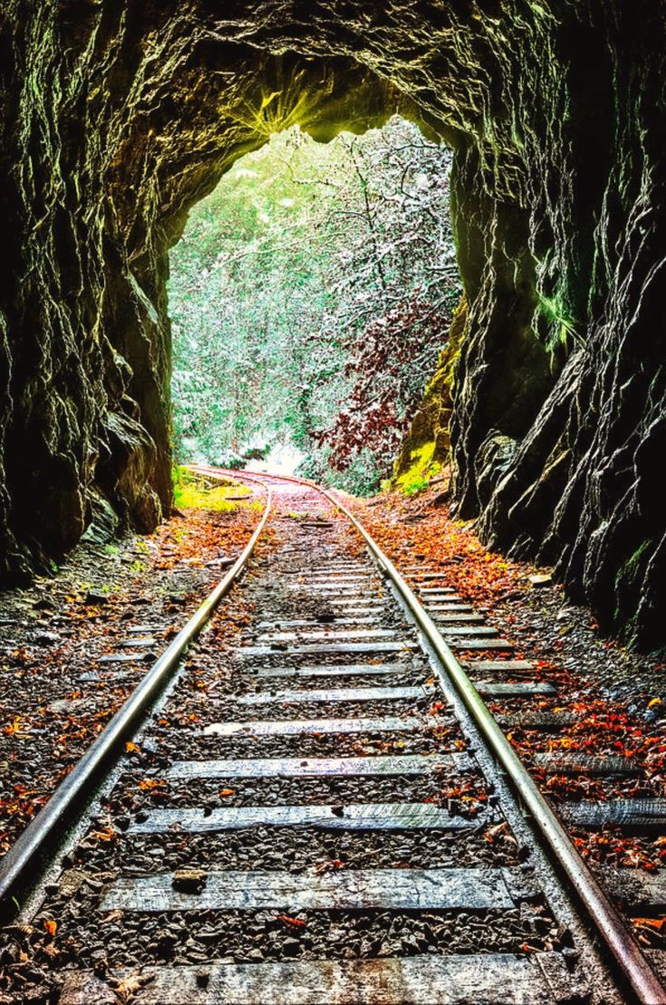 Fall Into Winter At The End Of The Line is a photograph by Debra and Dave Vanderlaan. The rain came down all night and turned into snow, so in the morning, the mist and frost cling to the trees and in the air, deep in the Smoky Mountains. This railroad tracks is in the Blue Ridge mountains of North Carolina between the small towns of Murphy and Andrews. This walk along the tracks is most interesting, leading the hiker over a trestle and into a rather long tunnel. Source fineartamerica.com