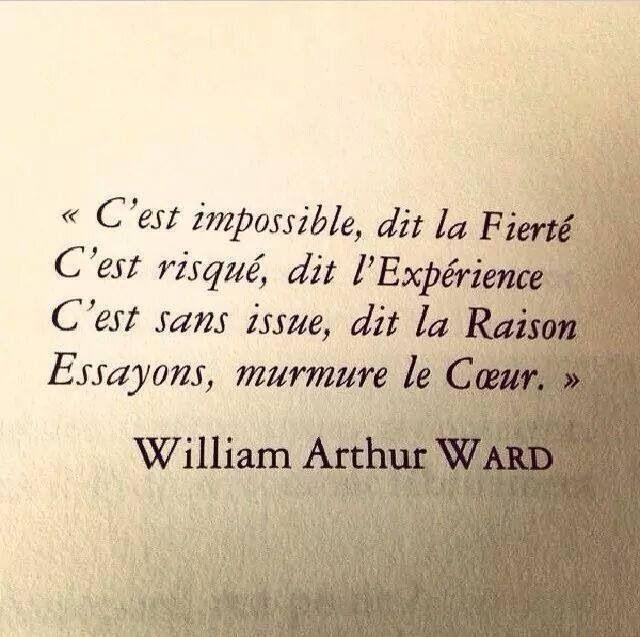 Inspirational Quote: C'est impossible dit la Fierté C'est risqué dit l'Expérience C&#3