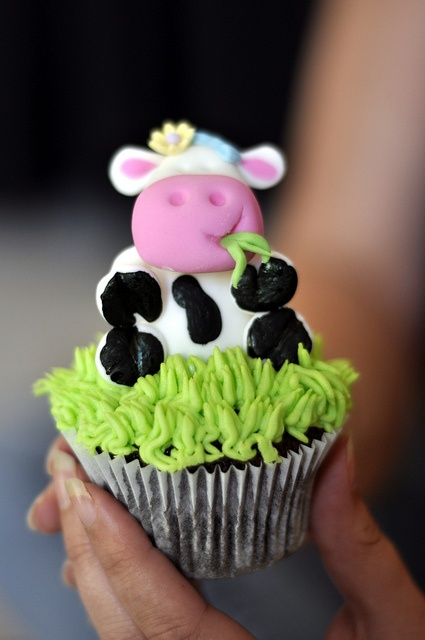 135 Best Images About Cow And Horse Cakes On Pinterest