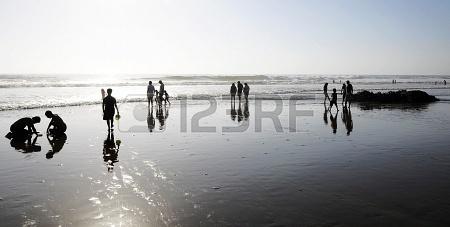 Beach, low tide  Mantencillo  Chile