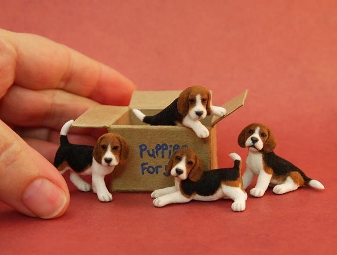 mini beagle pups, needle felted so tiny! just amazing. #feltedpuppy #needlefelted