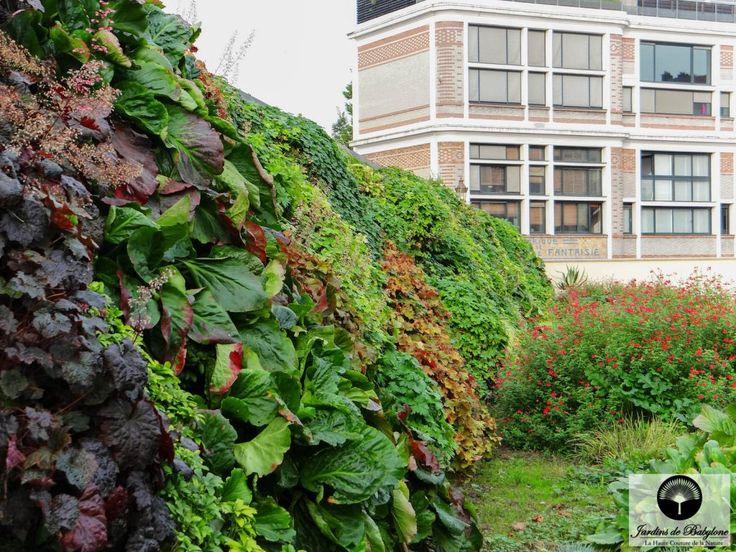Les 25 meilleures id es de la cat gorie toiture v g talis e sur pinterest c - Plante toiture vegetalisee ...
