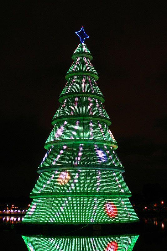 Christmas Tree - Belo Horizonte, Minas Gerais