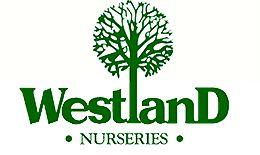 Westland Nurseries, Tasmania
