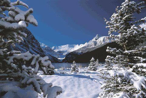 Rockies Snow Adventure