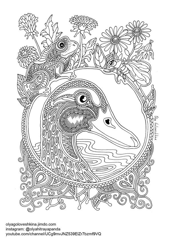 2202 Best Animal Coloring Images On Pinterest