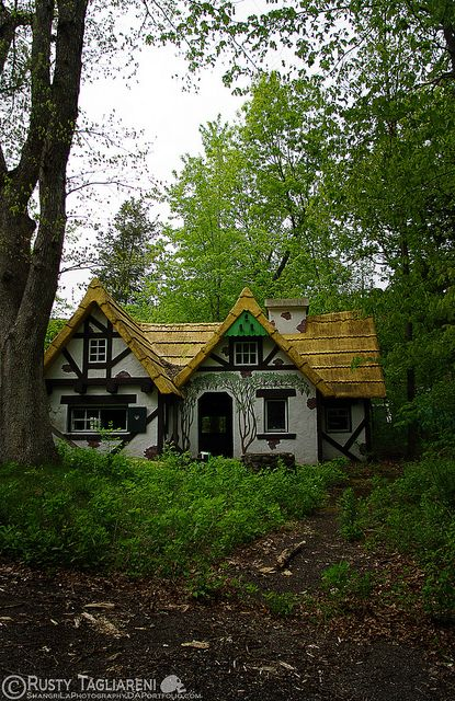 145 best chalet images on pinterest chalet design for Witches cottage house plans