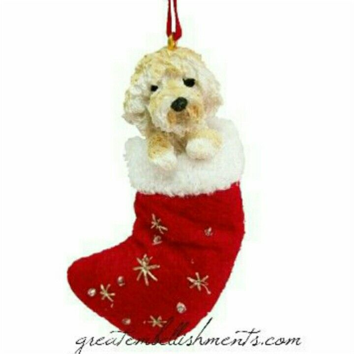 Blonde doodle Santa stocking ornament. Labradoodle and Goldendoodle |  Labradoodle & Goldendoodle Swag | Pinterest | Goldendoodle, Pets and Dog  memorial - Blonde Doodle Santa Stocking Ornament. Labradoodle And Goldendoodle