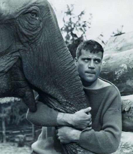 Oliver Reed in Hannibal Brooks 1969