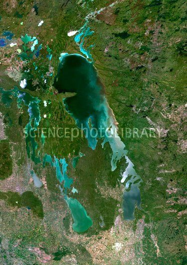 Satellite view of algae bloom. Beauty...and the beast.