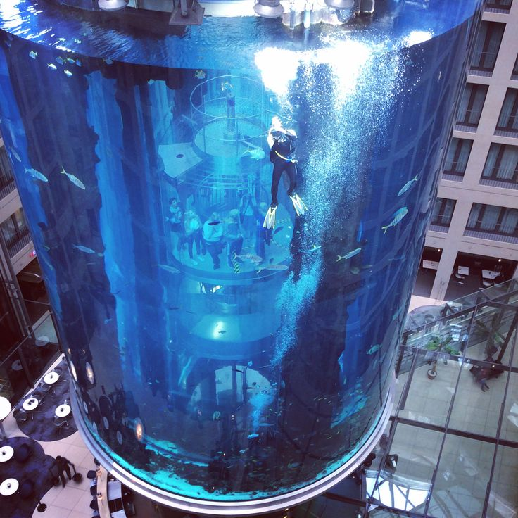 Radisson Blu Berlin hotel. Amazing aquarium in the middle of the lobby.