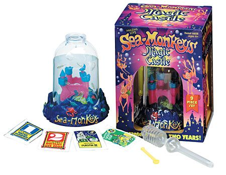 Sea-Monkeys - Magic Castle by Schylling - $19.99 magic rocks are still neat.