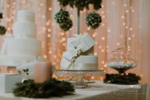099_wow-women-of-wedding_11-12-2016