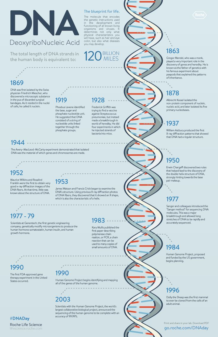 genes medical history Learn about genetic eye disorders that may cause blindness from the cleveland clinic in the medical genetics program and medical history.