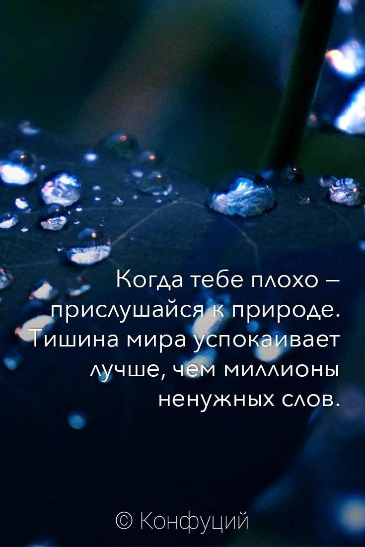 Когда тебе плохо — прислушайся к природе. Тишина мира успокаивает лучше, чем миллионы ненужных слов. © Конфуций #конфуций #дзен #мудрость #цитаты #astrotarot #астротарот