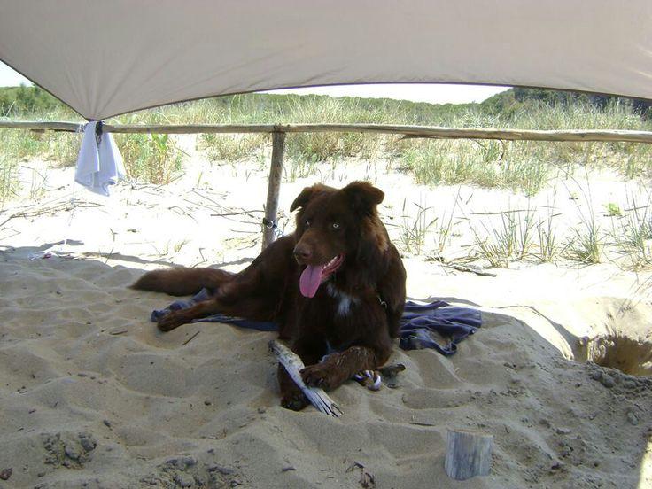 On the Beach :)