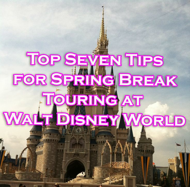 It's A Disney World After All: Top Seven Tips for Spring Break Touring at Walt Disney World. More stories on the Disney Bloggers Collection at http://disneybloggers.blogspot.com