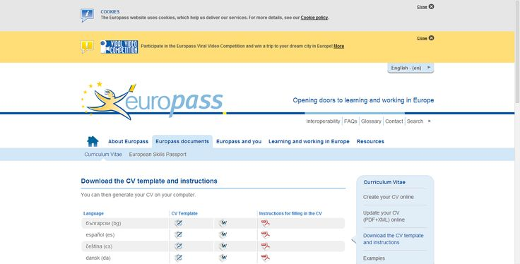 25  best ideas about europass cv on pinterest