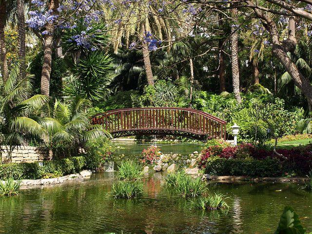 Gardens hotel botanico puerto de la cruz by tenerife holidays tenerife pinterest - Botanical garden puerto de la cruz ...