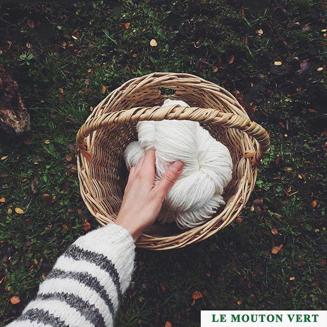 ➖Sweater: Cóndor, cod. 1224 Colección Las Australes  Le Mouton Vert ® @lemoutonvert ➖100% organic Wool Textile Design ➖Facebook: @lemoutonvert  www.lemoutonvert.org //