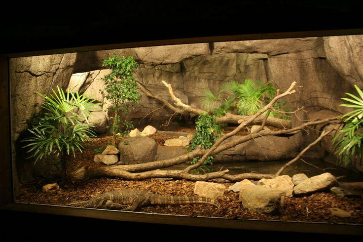 893 best Terrariums & Pet Ideas images on Pinterest ...Lace Monitor Enclosure