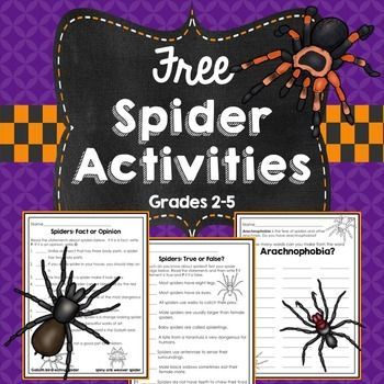 Please enjoy these free spider activities for October or any other time of the year when your kids are learning about these creepy crawlies!There are 3 activities included: How Many Words Can You Make From Arachnophobia? Spiders: True or False? Spiders: Fact or Opinion?This product can accompanySpiders: A Non-Fiction Booklet and Reading ActivitiesFor more October activities, check these out!October Reading Passages with Comprehension QuestionsOctober Writing CenterHalloween Synonyms and…