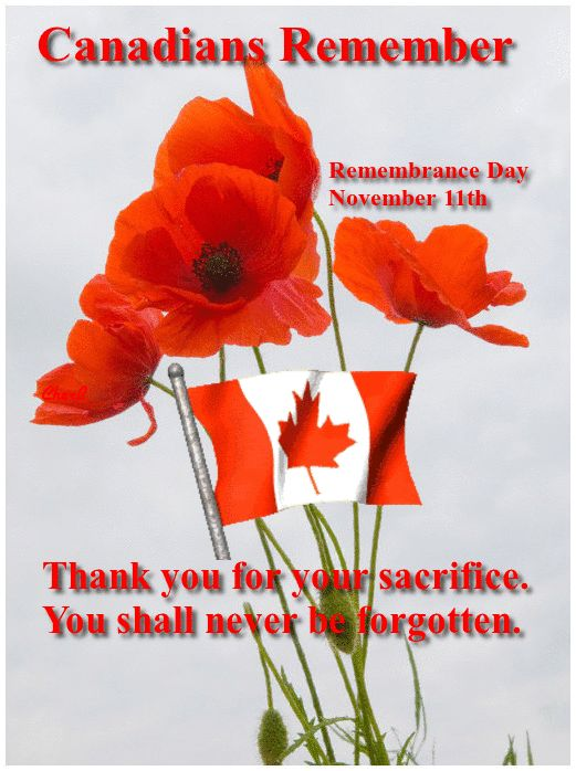 Canada's Remembrance Day, November 11th. We shall never forget.