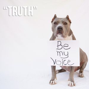 Truth Campaign...Stand Up For Pits