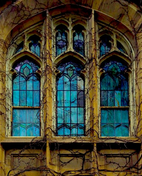 The beautiful vine covered stained glass windows at St. James Presbyterian church, 141st and St. Nicholas Avenue, Harlem, NYC