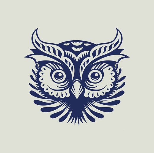The Owl via p53                                                       …