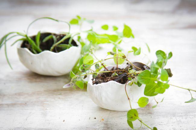 DIY Oven Bake Clay Eggs | http://hellonatural.co/diy-clay-egg-planters/