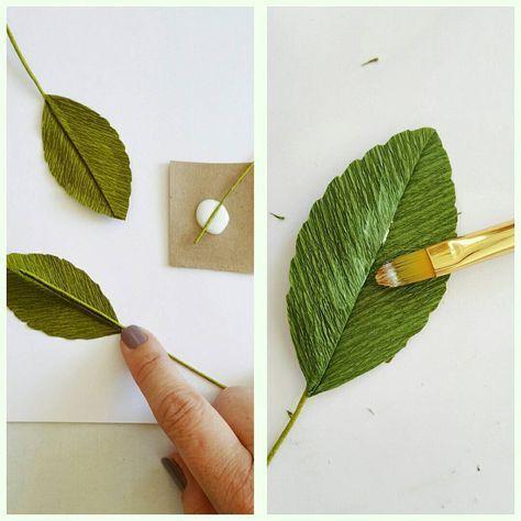 More Leaf Basics:
