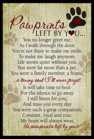 Pawprints Left By You | Professional Pet Sitters In Horsham, PA ...