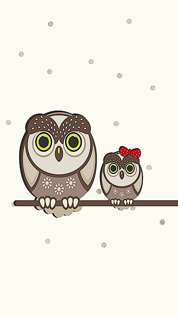 Amazing Wallpaper Home Screen Owl - 93220b43cd2065932477a45d8ea6e6bd--funny-wallpapers-baby-owls  Pictures_74169.jpg