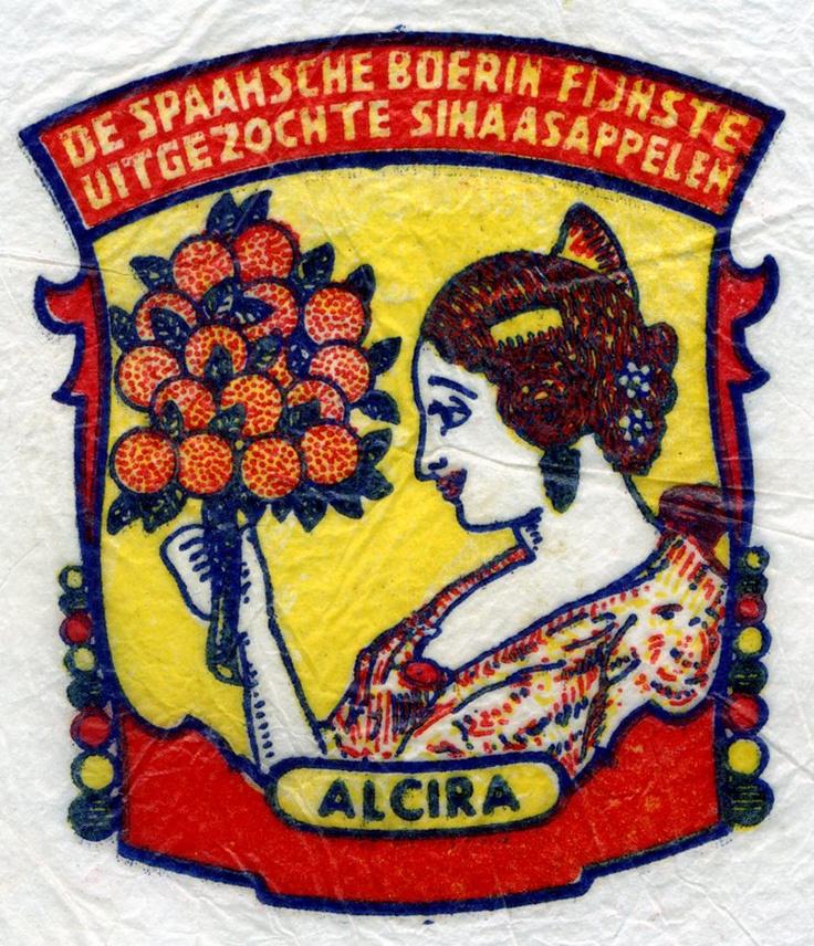 Alcira