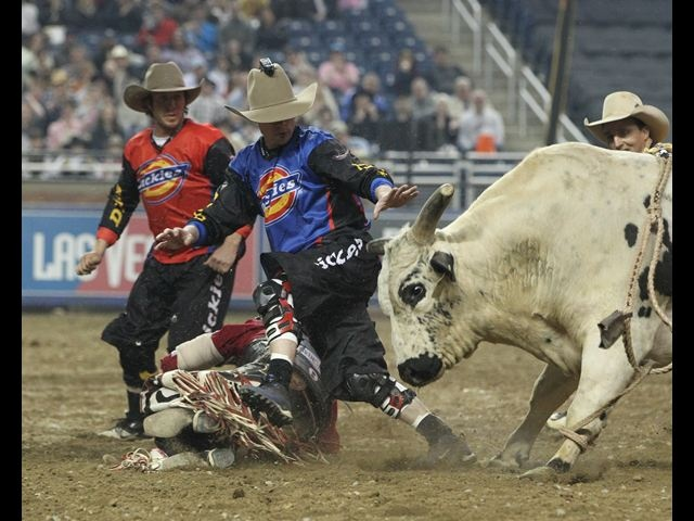 483 Best Images About Bull Riders On Pinterest Blueberry